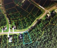 Home for sale: 0 Cane Bend, Carriere, MS 39426