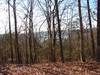 Home for sale: Lot 5 Monticello Rd., Galena, MO 65656