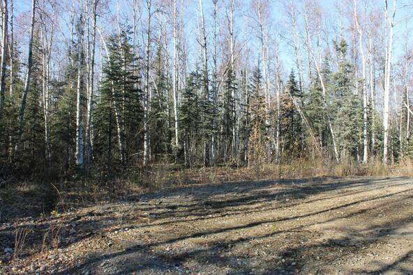 14837 E. Gold Miners Way, Willow, AK 99688 Photo 3