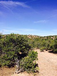 Home for sale: 17 Luna de Tano, Santa Fe, NM 87506
