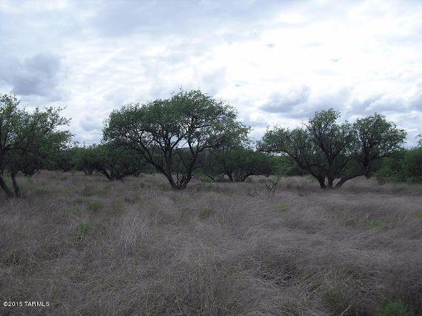 16005 Ranger Rd., Arivaca, AZ 85601 Photo 7