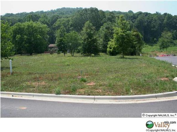 115 Lake Creek Dr., Guntersville, AL 35976 Photo 16
