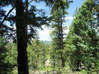 Home for sale: Los Alamitos Canyon, Pecos, NM 87552