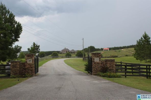 11 Shire Valley Farms, Chelsea, AL 35051 Photo 8