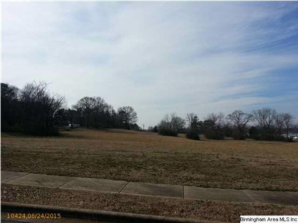 20 Old Roadway, Cropwell, AL 35054 Photo 6