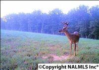 Home for sale: 0 Tupelo Pike, Scottsboro, AL 35768