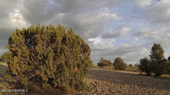 2140 W. Quiet Antelope Ct., Williams, AZ 86046 Photo 10