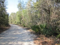 Home for sale: 00 N.E. Holly Point Trl., Lee, FL 32350