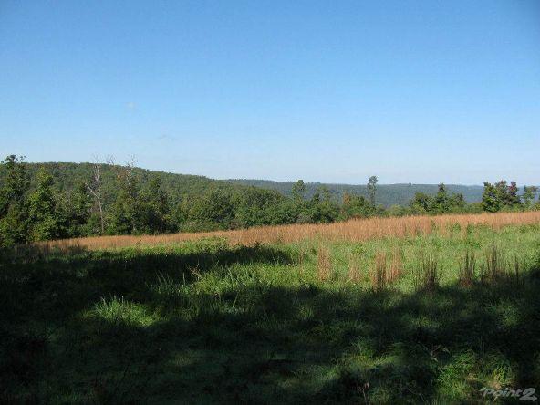 Smith Mountain Rd., 97 Acres, Jasper, AR 72628 Photo 15