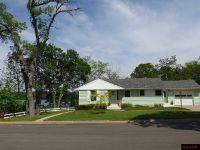 Home for sale: 232 N. Crystal, Lake Crystal, MN 56055