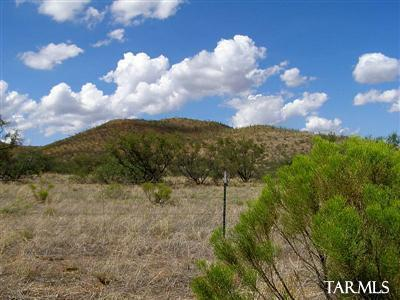 72 Ac Reata Pass (High Lonesome), Elfrida, AZ 85610 Photo 6