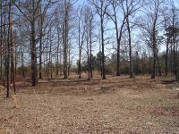 Home for sale: 2701 W. Drowning Creek, Dacula, GA 30019