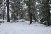 Home for sale: 187 Fox Peak Dr., Lake Almanor, CA 96137