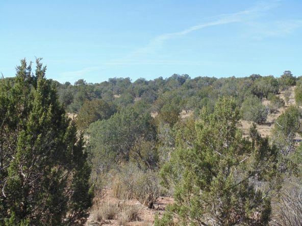 57174 N. Bridge Canyon Parkway, Seligman, AZ 86337 Photo 2