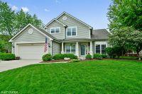 Home for sale: 220 Mondovi Dr., Oswego, IL 60543