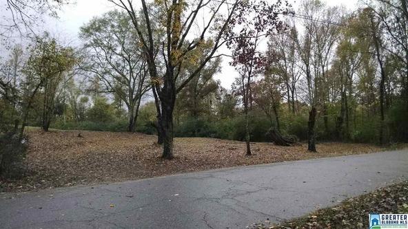 6805 N.E. Elliott Rd., Trussville, AL 35173 Photo 5
