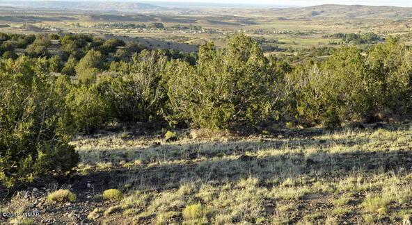199.54 Acres, Concho, AZ 85924 Photo 17