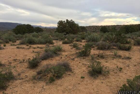 7340 N. Frerichs Ranch Rd., Hackberry, AZ 86411 Photo 22