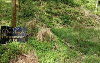 Home for sale: Lt 98 Overlook Brasstown, Brasstown, NC 28902