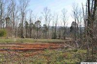 Home for sale: 110 Deer Run Ln., Harvest, AL 35749