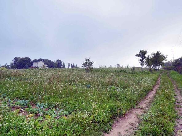L2 County Rd. Jg, Mount Horeb, WI 53572 Photo 45