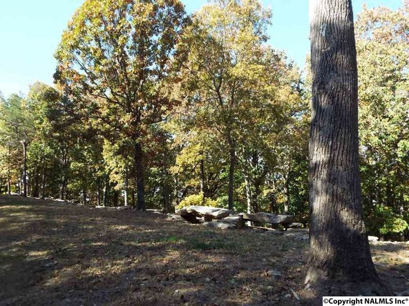15 S. County Rd. 89, Mentone, AL 35984 Photo 19