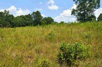 Home for sale: Lot 19 Paramount Dr. Sunset Ridge On Radisson, Seneca, SC 29678