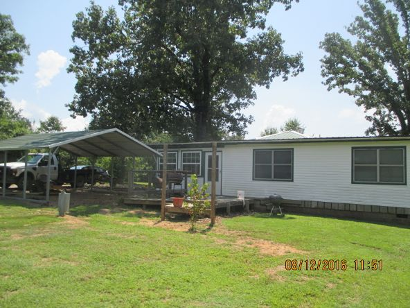 3136 Cr 3390, Clarksville, AR 72830 Photo 5