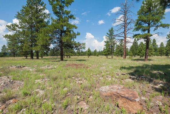 8r Lockett Ranches, Flagstaff, AZ 86001 Photo 16