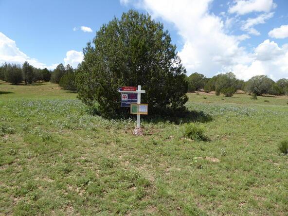 350 No Name, Ash Fork, AZ 86320 Photo 32