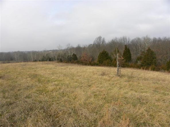 1739 Graves Rd., Stamping Ground, KY 40379 Photo 7
