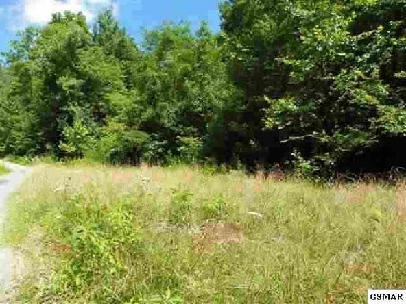Lot 24 Windswept View Way, Sevierville, TN 37862 Photo 6