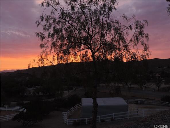 32065 Calle Vista, Agua Dulce, CA 91390 Photo 40