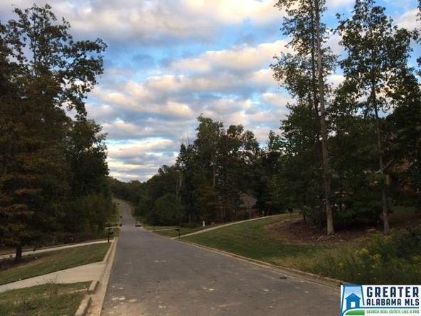 380 Gray Fox Rd., Springville, AL 35146 Photo 10
