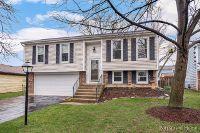 Home for sale: 485 Hampton Ln., Roselle, IL 60172