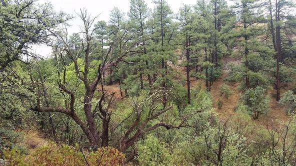 2300 W. Loma Vista Dr., Prescott, AZ 86305 Photo 7