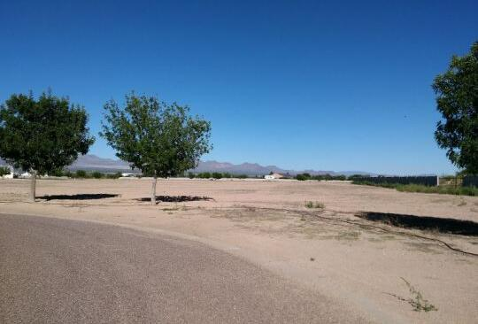 6535 W. Sycamore Ln., Pima, AZ 85543 Photo 8