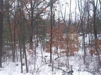 Home for sale: 12.31 Ac Hwy. 12/16, Wisconsin Dells, WI 53965