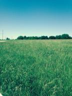 Home for sale: Parcel 2 Farm Rd. 48, Fair Grove, MO 65648