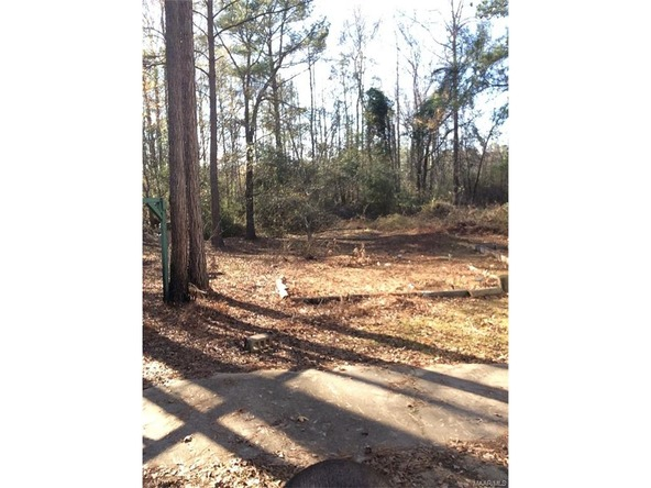 2605 Robinson Rd., Eclectic, AL 36024 Photo 9
