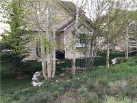 Home for sale: 29 Audrey Cir., Breckenridge, CO 80424