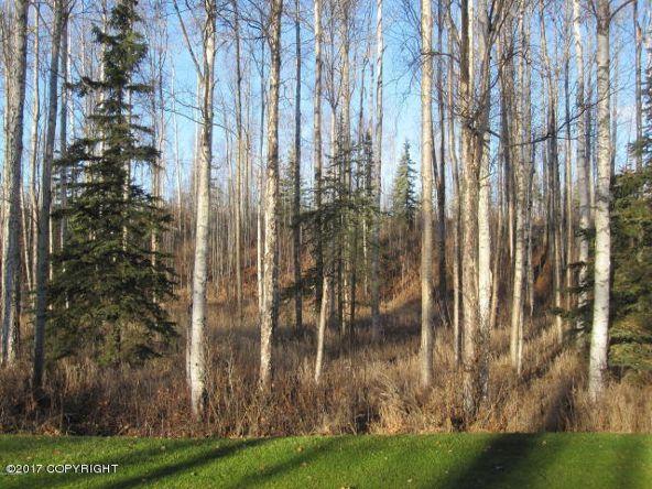 7645 S. Settlers Bay Dr., Wasilla, AK 99623 Photo 5