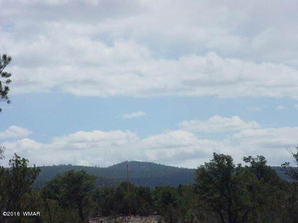 8 Acres Off Of Acr N. 3114, Vernon, AZ 85940 Photo 1