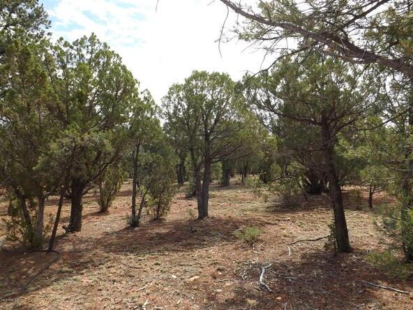 2374 Wildcat Cir., Overgaard, AZ 85933 Photo 4