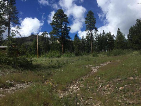 22 Cr 2074, Alpine, AZ 85920 Photo 5