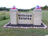 Home for sale: Lot 39 Brookview Dr., Dandridge, TN 37725