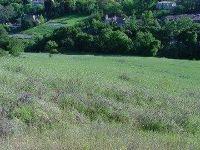 Home for sale: 0 Mt Eden Rd., Saratoga, CA 95070