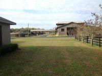 Home for sale: 17296 N.W. Gainesville Rd., Reddick, FL 32686