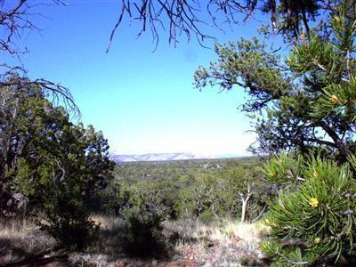 54867 N. Presidio Parkway, Seligman, AZ 86337 Photo 6