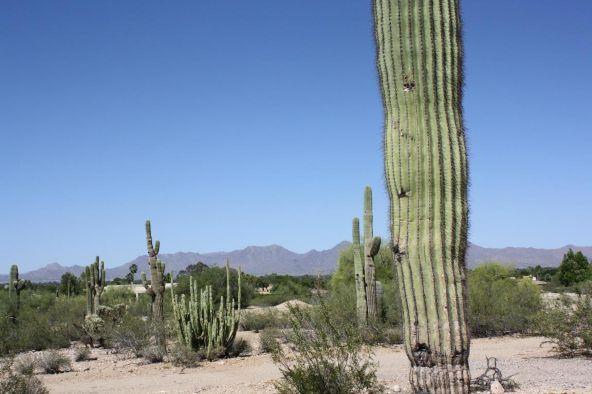 7643 N. Ironwood Dr., Paradise Valley, AZ 85253 Photo 7